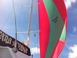 Flying our spinnaker...